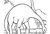 Dinosaur Coloring Pages | Apatosaurus or Brontosaurus Dinosaurs