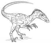 Dinosaurs Coloring pages. Select from 24661 printable Coloring pages of cartoons… Wallpaper