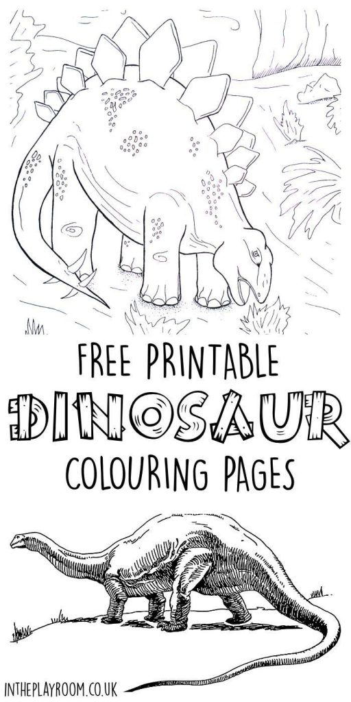 Set of 5 free printable dinosaur colouring pages featuring realistic dinosaurs a...