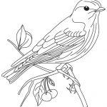 Blue Bird Cartoon - AZ Coloring Pages