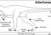 Fun name! Albertosaurus. Click for similar free coloring pages about dinosaurs! ...