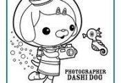 Octonauts: Dashi