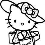 Plein de Hello kitty