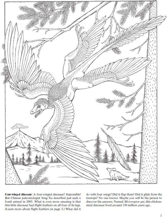 Welcome-to-Dover-Publications-Flying-Dinosaurs-Coloring-Book Welcome to Dover Publications Flying Dinosaurs Coloring Book Dinosaurs