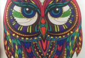 Adult Coloring Book Stress Relieving Animal Designs Adult Coloring Book Stress Relieving Animal Designs