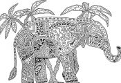 Advanced Coloring Pages Of Animals Advanced Coloring Pages Of Animals