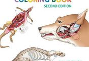 Animal Anatomy Coloring Book Animal Anatomy Coloring Book