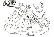 Animal Jam Coloring Pages Snow Leopard Animal Jam Coloring Pages Snow Leopard
