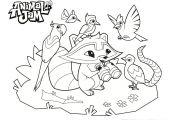 Animal Jam Coloring Sheets Animal Jam Coloring Sheets