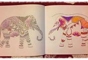 Animal Kingdom Coloring Book Finished Animal Kingdom Coloring Book Finished