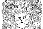 Animal Mandala Coloring Book Animal Mandala Coloring Book