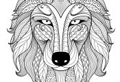 Animal Mandala Coloring Pages for Adults Animal Mandala Coloring Pages for Adults