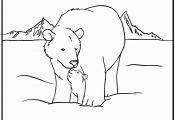 Arctic Animals Printable Coloring Pages Arctic Animals Printable Coloring Pages