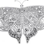 Butterfly Coloring Books for Adults butterfly Coloring Books for Adults
