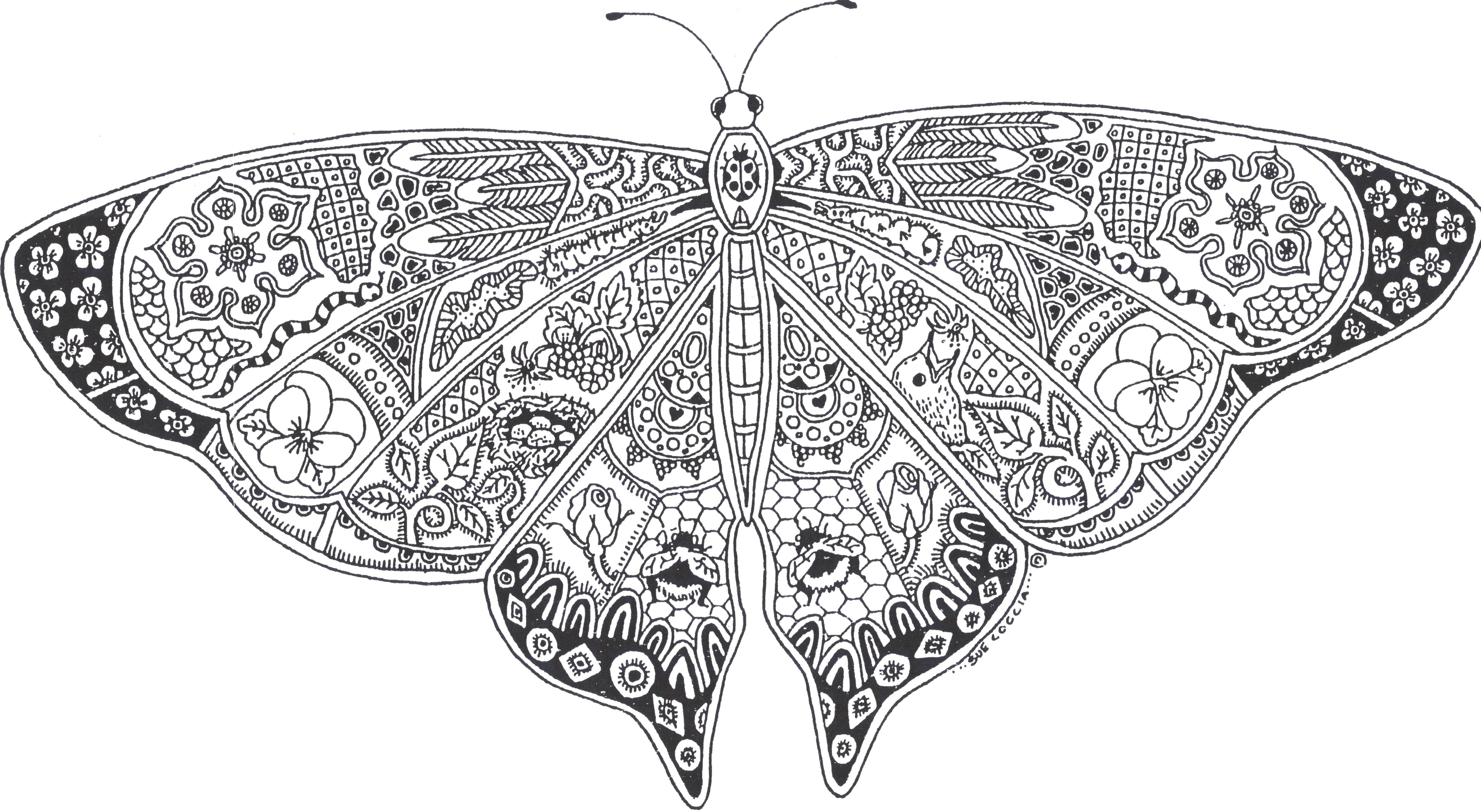 printable coloring page butterfly