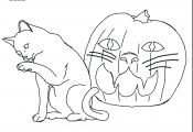Cat and Pumpkin Coloring Page Cat and Pumpkin Coloring Page