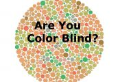 Color Vision Test Animals Color Vision Test Animals