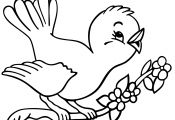 Coloring Pages for Kids Birds Coloring Pages for Kids Birds