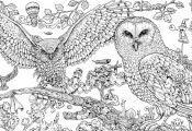 Coloring Pages Of Animals Hard Coloring Pages Of Animals Hard