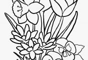 Coloring Pages Of Flowers and butterflies Coloring Pages Of Flowers and butterflies