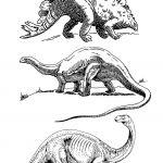 Coloring Set Dinosaurs Coloring Set Dinosaurs