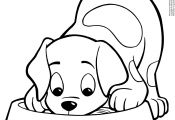 Dog and Puppy Coloring Pages Dog and Puppy Coloring Pages