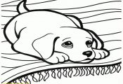 Dog Bone Coloring Page Dog Bone Coloring Page