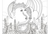 Dragon Coloring Pages for Adults Dragon Coloring Pages for Adults