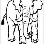Endangered Animals Coloring Pages Endangered Animals Coloring Pages