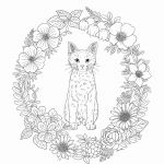 Free Printable butterfly Coloring Pages Free Printable butterfly Coloring Pages