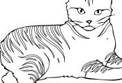Free Printable Cat Coloring Pages Free Printable Cat Coloring Pages