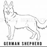 German Shepherd Puppy Coloring Pages German Shepherd Puppy Coloring Pages