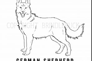 German Shepherd Puppy Coloring Pages German Shepherd Puppy Coloring Pages