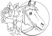 Horse Head Coloring Page Horse Head Coloring Page