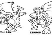 Pokemon Coloring Pages Of Zekrom and Reshiram Pokemon Coloring Pages Of Zekrom and Reshiram