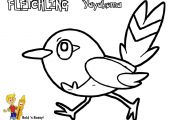 Pokemon Fletchling Coloring Pages Pokemon Fletchling Coloring Pages