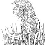 Realistic Horse Coloring Pages Realistic Horse Coloring Pages