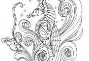 Sea Horse Coloring Page Sea Horse Coloring Page