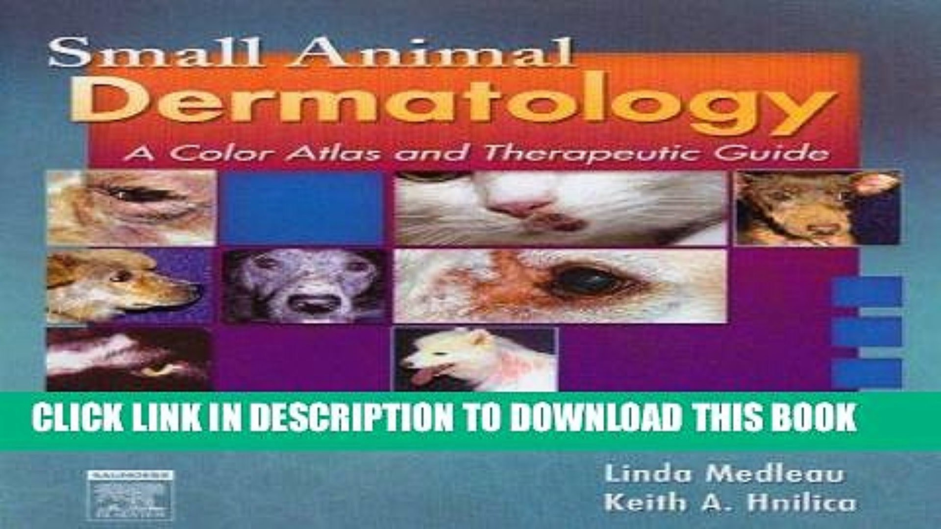 small-animal-dermatology-a-color-atlas-and-therapeutic-guide-pdf-of-small-animal-dermatology-a-color-atlas-and-therapeutic-guide-pdf Small Animal Dermatology A Color atlas and therapeutic Guide Pdf Animal