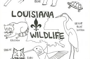 Swamp Animals Coloring Pages Swamp Animals Coloring Pages