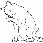 Warrior Cat Coloring Pages Warrior Cat Coloring Pages