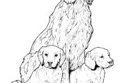 Yellow Lab Puppy Coloring Pages Yellow Lab Puppy Coloring Pages
