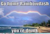 Funny My Little Pony: Friendship is Magic Memes - Rainbow Dash is Drunk #MyLittl...