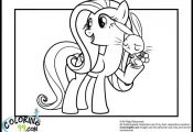 My Little Pony Fluttershy Coloring Pages Minister Coloring  Coloring, FLUTTERSHY...