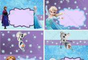 Frozen Girl Food Labels - Frozen Birthday - Frozen Party - Frozen Tent Cards