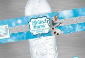INSTANT DOWNLOAD Frozen Water Bottle Label, Frozen Melted Snow Label, Frozen Pri...