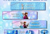 Set of 4 Frozen Printable Frozen Water Bottle by DetourDuJour