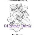 State Flower Coloring Book: Massachusetts Mayflower Coloring Page  Book, Colorin...